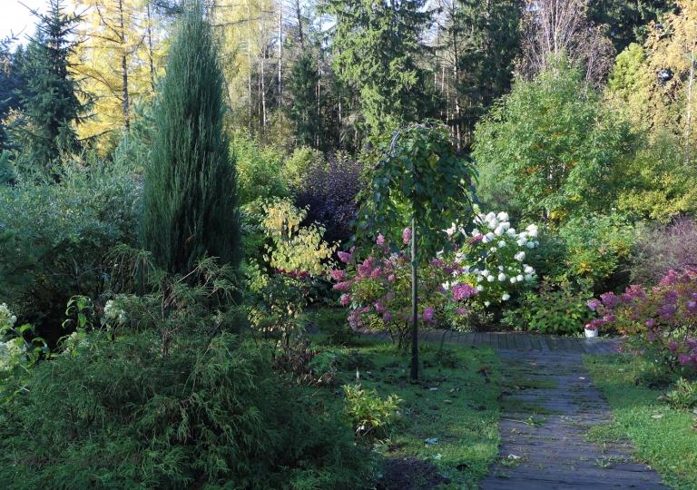 Виды сада 2
